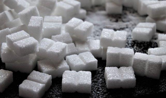 Kütahya Şeker'de üretim kampanyası başlıyor