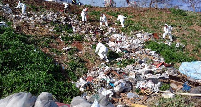 Adalar'daki fayton temizliğinde 25 ton atık çıkarıldı