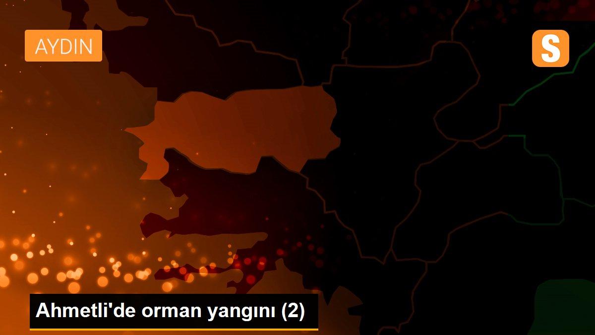 Ahmetli'de orman yangını (2)