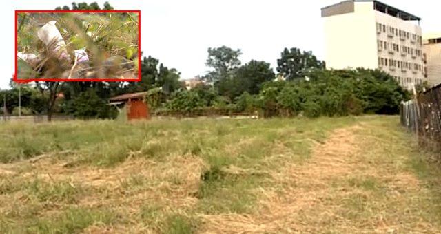 Çöpte köpekler tarafından parçalanmış bebek cesedi bulundu