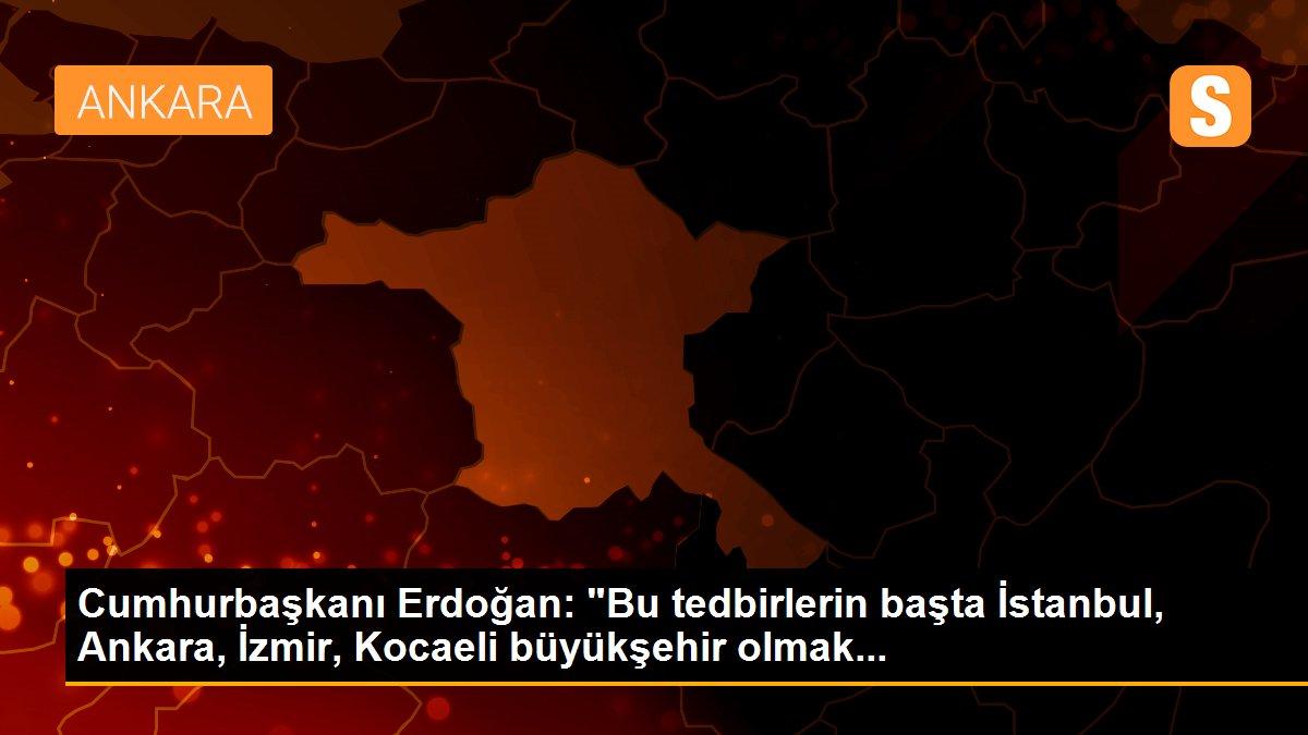 """Cumhurbaşkanı Erdoğan: """"Bu tedbirlerin başta İstanbul, Ankara, İzmir, Kocaeli büyükşehir olmak..."""