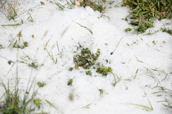Dolu yağışı ekili arazilerde hasara neden oldu