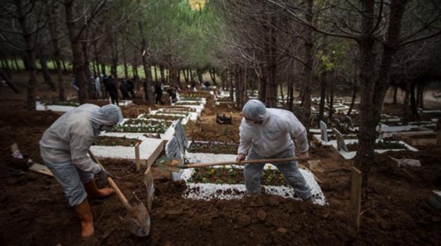 İBB Mezarlık Daire Başkanı Ayhan Koç: Bize gelen hiçbir ölüm raporunda koronavirüs yazmıyor