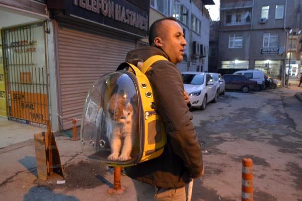 İş makinesi operatörü sahiplendiği kediyi sırt çantasında taşıyor