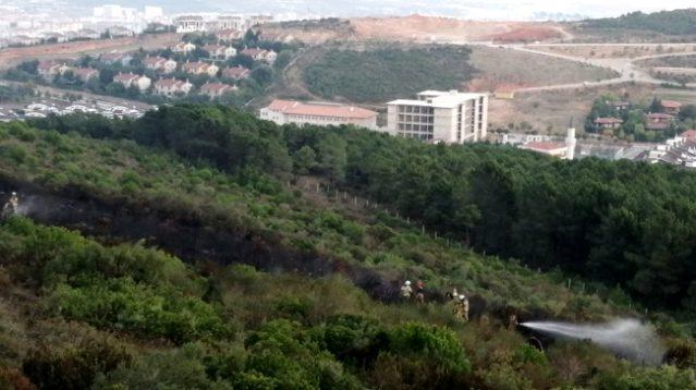 İstanbul'da ormanı kundaklayan kişi kameralara yakalandı! Polis, şahsı gözaltına aldı