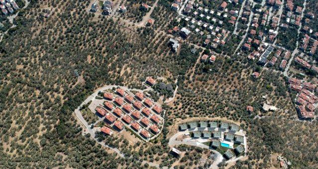 Kaz Dağları'nda villa yapımı için 2.5 milyon zeytin ağacının kesildiği ortaya çıktı