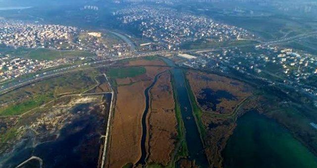 Kruvaziyer gemileri Kanal İstanbul için şimdiden sıraya girdi