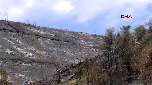 Menderes'teki yangının tahribatı, havadan görüntülendi