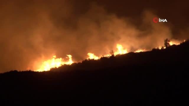 Son dakika haberleri... Bakan Pakdemirli yangın bölgesinde incelemelerde bulundu