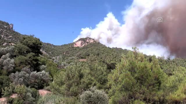 Turgutlu'daki orman yangını devam ediyor
