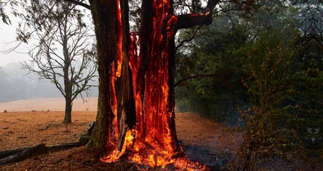 Uzman isimden korkutan uyarı: Avustralya'daki yangınlar hava sıcaklığını düşürebilir